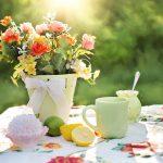 Alles wat je moet weten bij de keuze voor een tuinscherm